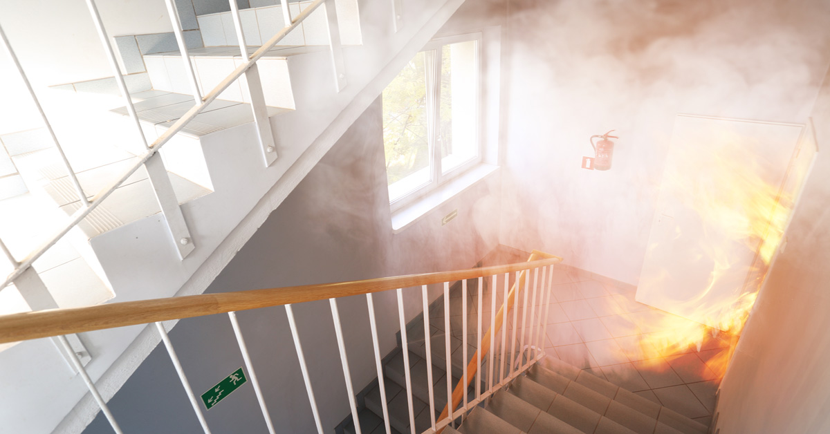 Fire Door Strips >> Intumescent Strip vs Smoke Seals: Differences & How to Use ...